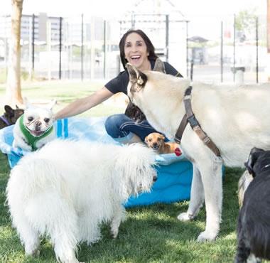 Dog Daycare Las Vegas